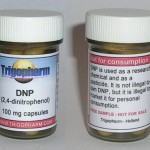 DNP (2,4 dinitrophenol) and fat loss