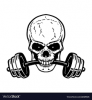 1586733324315_Skull and BB.png