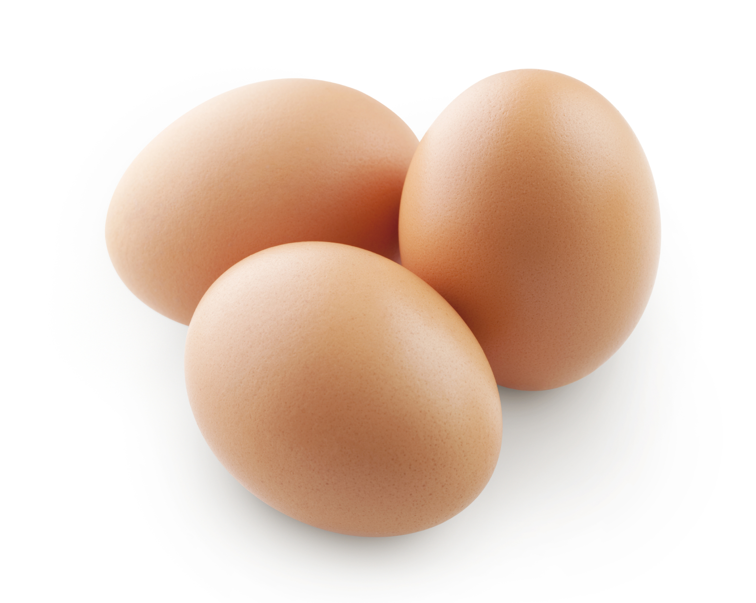 Eggs - protein and cholesterol for bodybuilding