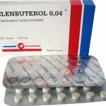 Clenbuterol and fat loss