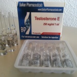 The Perfect Testosterone Cycle – Best Choices of Ancillaries and Steroids to Include