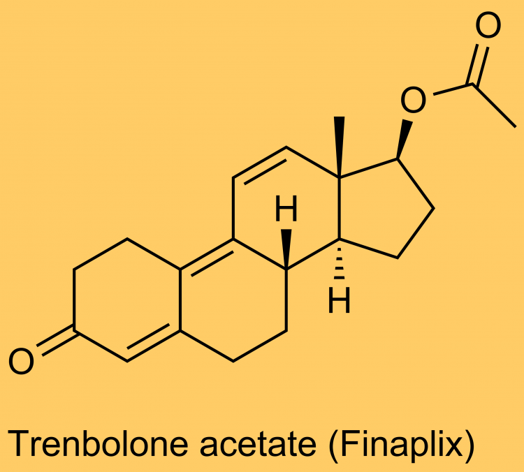 The Science of Trenbolone, Part 2
